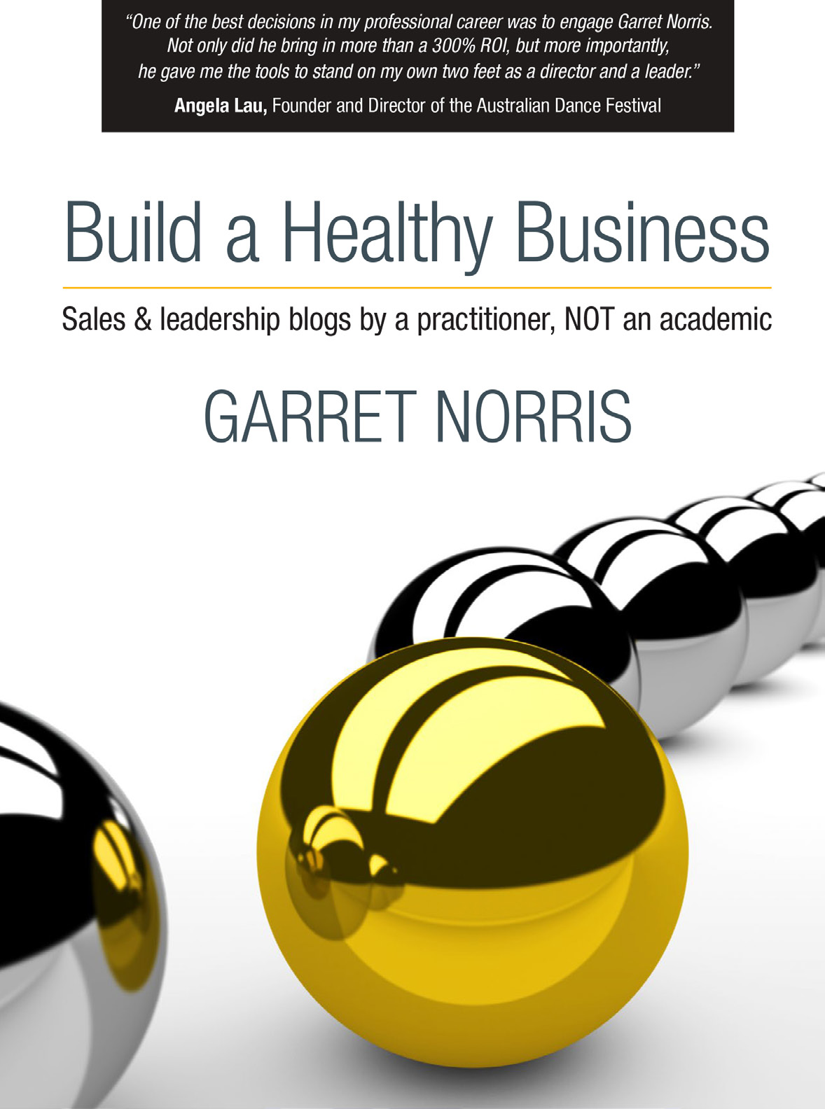 Build a Healthy Business – sales & leadership blogs by a practitioner, NOT an academic by Garret Norris